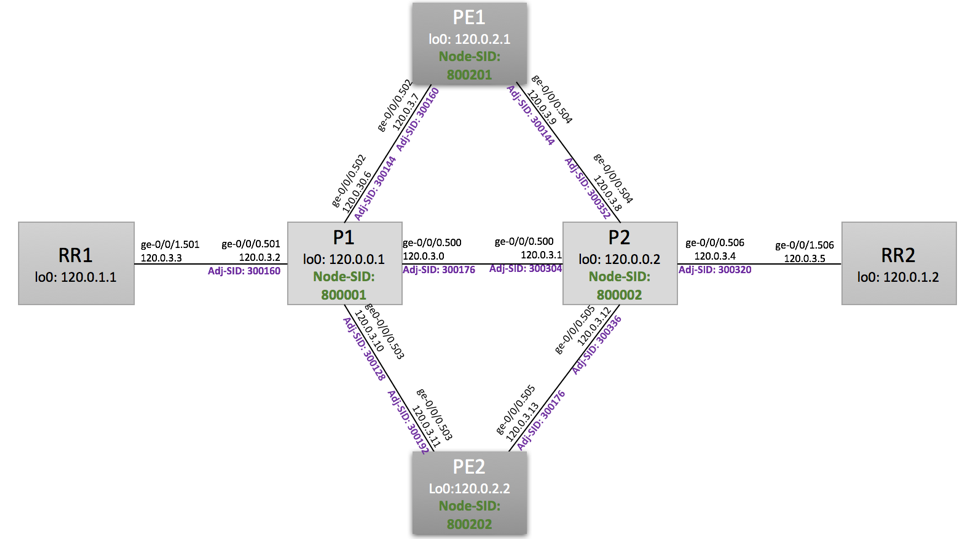 Segment Routing SID assignments